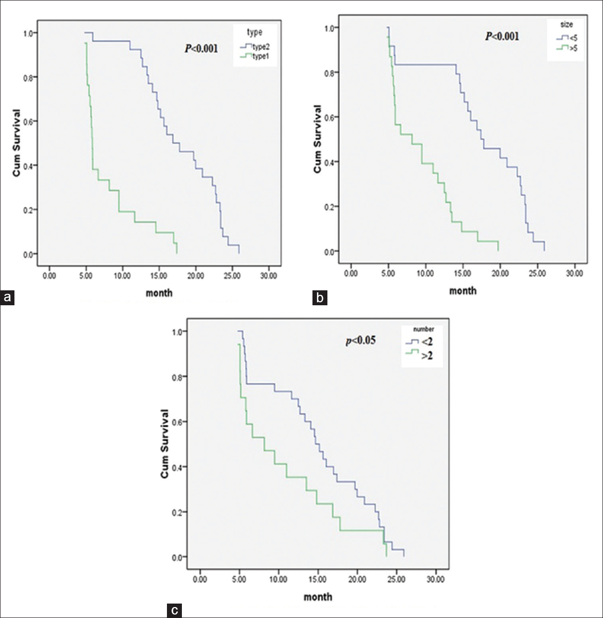 Figure 2: In Child–Pugh A grade, comparison of overall survival in hepatocellular carcinoma patients with portal vein tumor thrombosis according to the type of portal vein tumor thrombosis (a), size of tumors (b), and number of tumors (c)